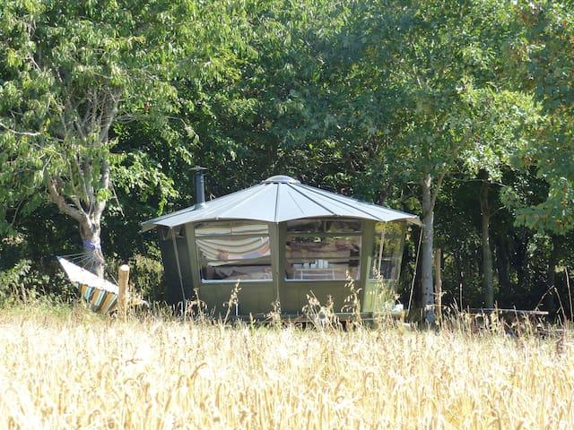 Fingle Caban - Devon - Cabin
