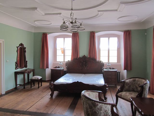 Science history apartment in the pa - Dubenec - Bed & Breakfast