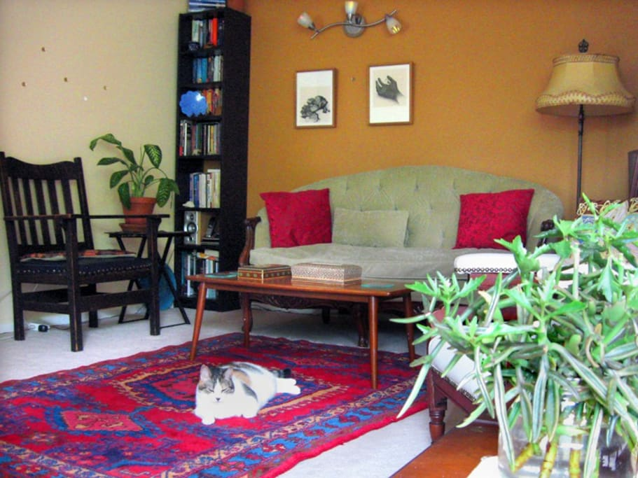The living room. There are no pets in the house presently.