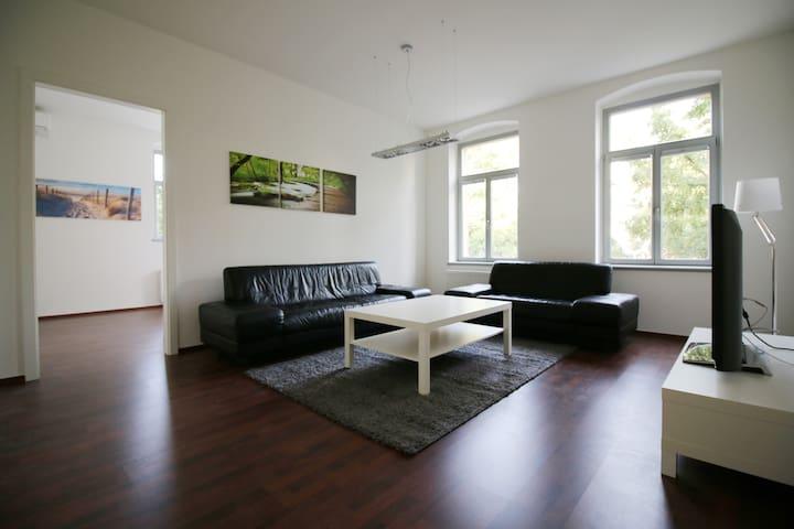 luxuriöse neue Ferienwohnung im Herzen Radebeuls - Radebeul - Apartemen