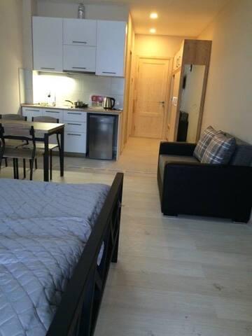 Studio Apartment near Didveli skiing slopes - Bakuriani - Lägenhet