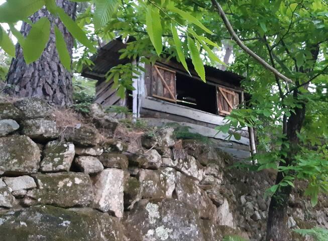 La cabane au fond des bois