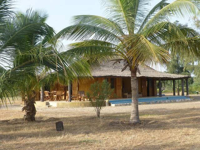 La maison avec les cocotiers