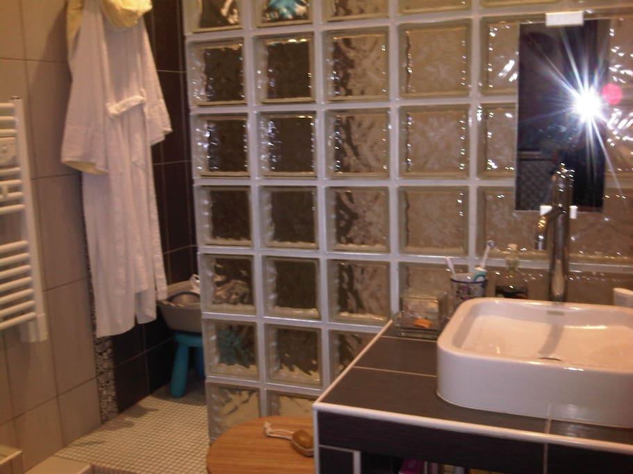 Salle de bain. Douche italienne.