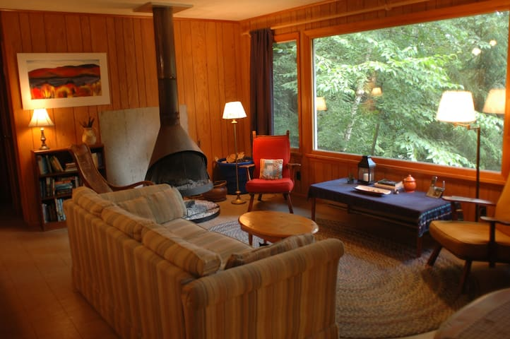 Cozy Cottage by Lake George - Silver Bay - Huis