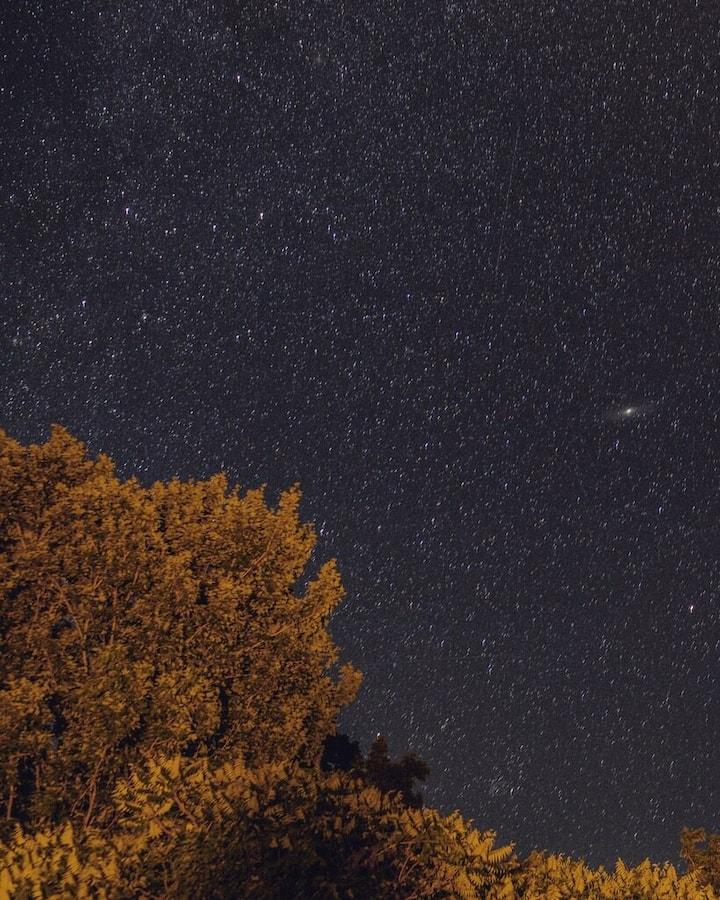 Starry skies in the backyard