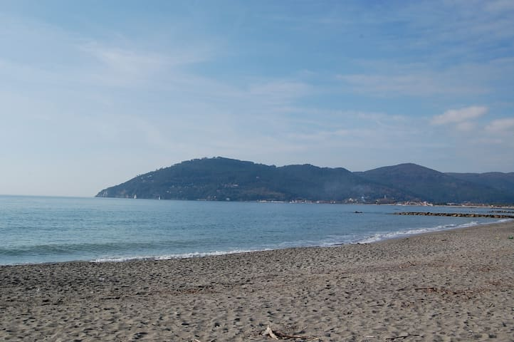 Total relax, close to sand beach - Sarzana - Appartement
