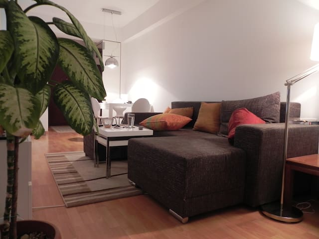 A lovely home during your Skopje visit