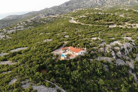 Villa Grazia with pool, total privacy