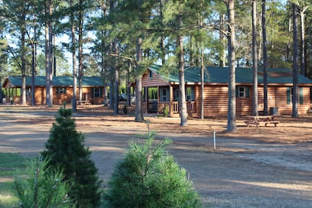 The Cabins at Fish River Trees - Cabin D