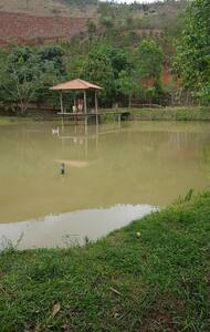 Casa sítio - piscina - área pesca