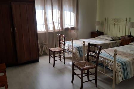 Stanza singola - San Matteo - Bed & Breakfast