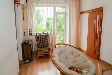 Within 3minutes walk from subway, bright and cosy - Минск - Квартира
