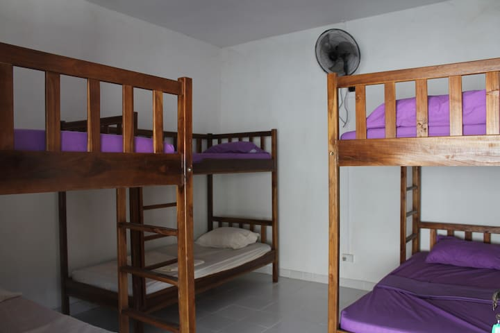 Dili Central Backpackers Bed in Fan Cooled Dorm - Díli - Hostel