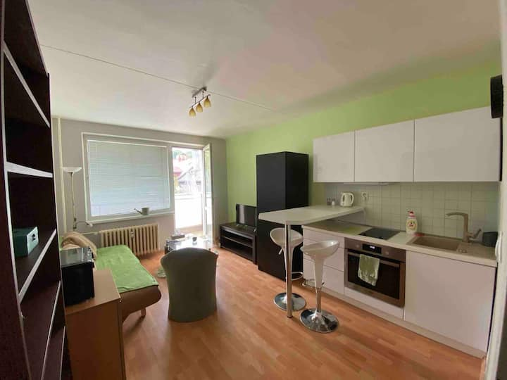 Modern green flat at centrum
