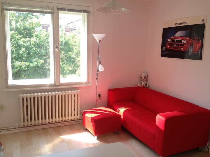 2-room apartment for single use!