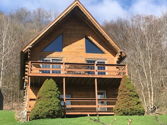 Katie O'Bryan's Cabin in Allegany, New York