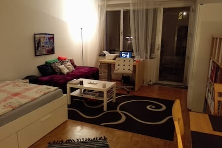 Private spacious room &terrace in shared apartment - Vienna