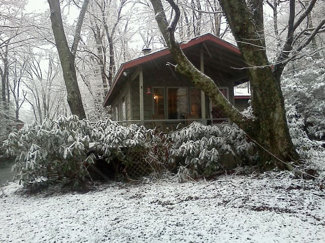 Cozy Creekside Cabin- in Boone