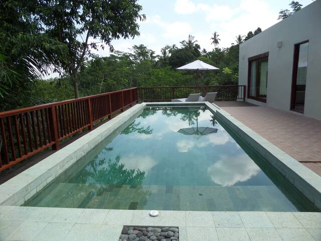Spacious villa with private pool in rain forest - Payangan - 別墅