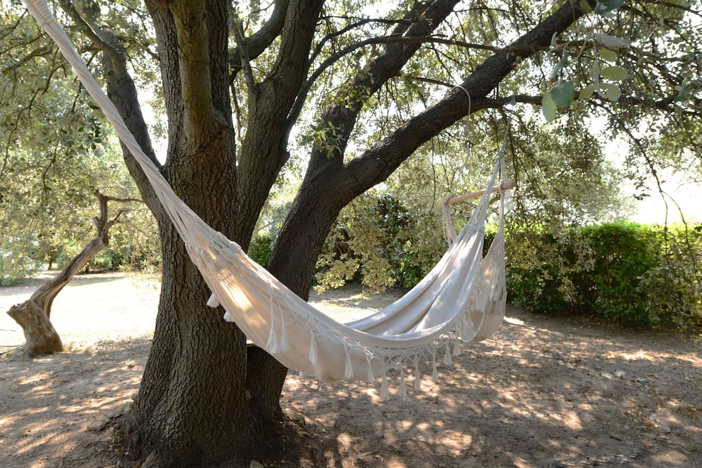 Hamac à l'ombre d'un chêne vert