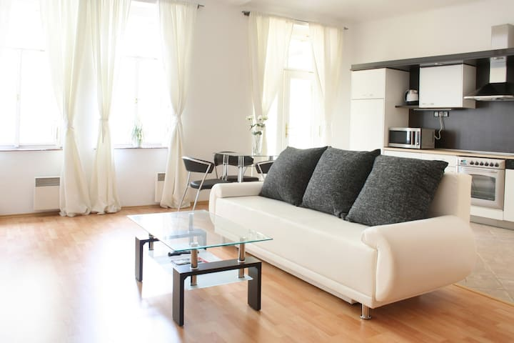 1 BDR Apartment Old Town Square  - Prague - House