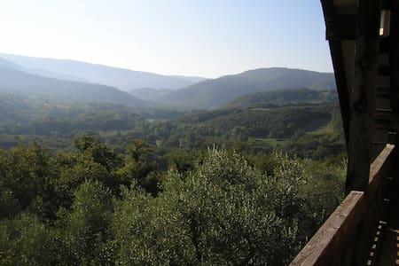 Casa nel bosco - Ficulle