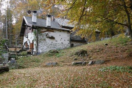Casa vacanze il Galletto - Crodo - Casa