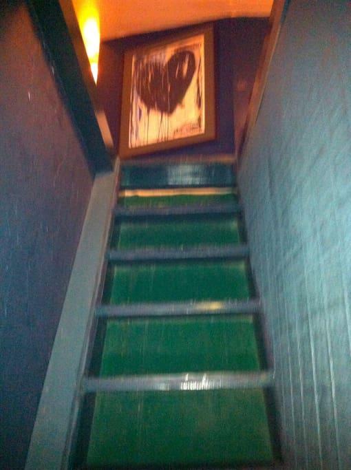 ladder up into loft