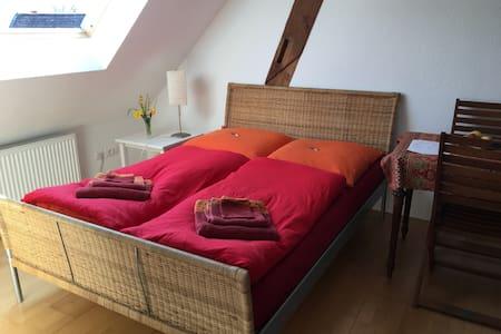 Cozy Studio near Basel EuroAirport - Bartenheim - Huoneisto
