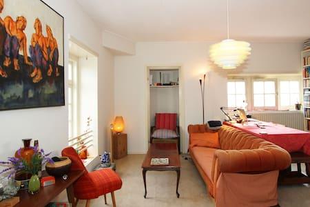 cozy art deco loft with a view - Amsterdam