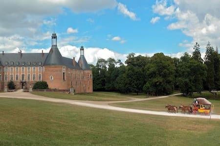 Authentic stay at a family castle. - Saint-Fargeau