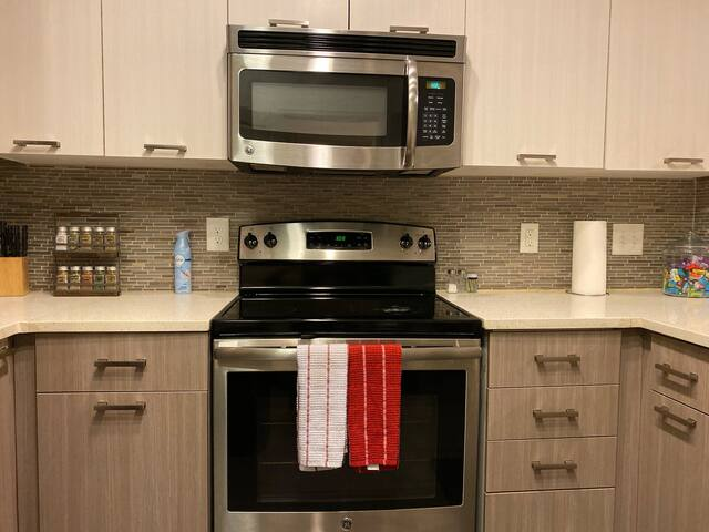 Luxurious 1 Bedroom apt in Brookhaven/Buckhead