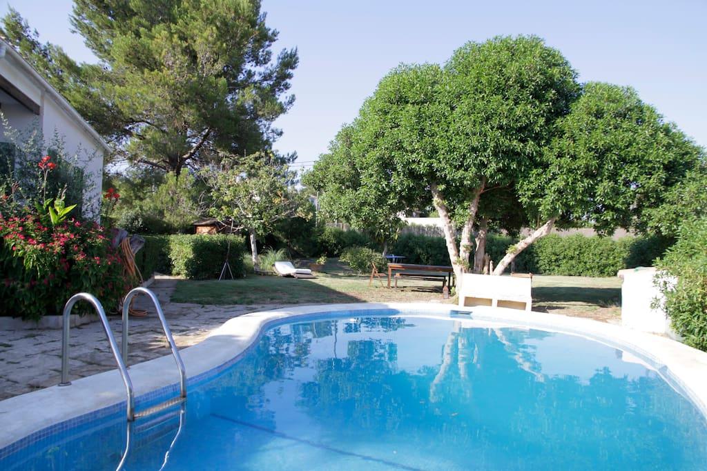 Casa piscina jard n palma mallorca chalets en alquiler for Piscina y jardin mallorca