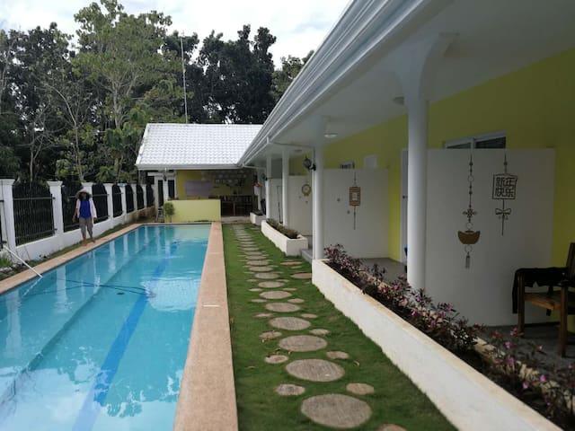 Free Soul Diving Center飞梭潜水中心Dao(确切位置 (Hidden by Airbnb) 地图可查)