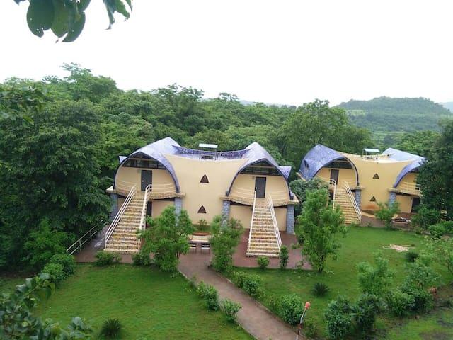 Z-Bac Adventures Campsite, Kolad