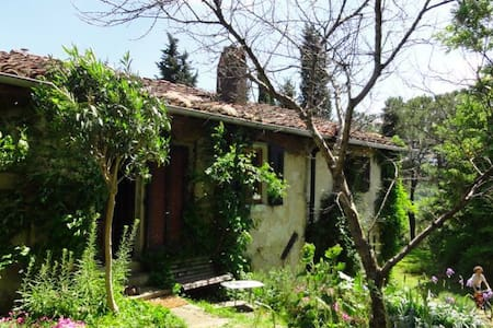 Peacefull apartment in countryside - Fucecchio