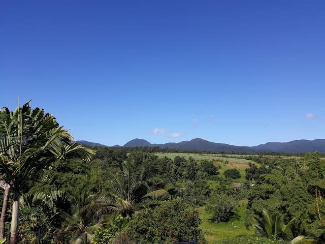 Chambre  Papaye Verte