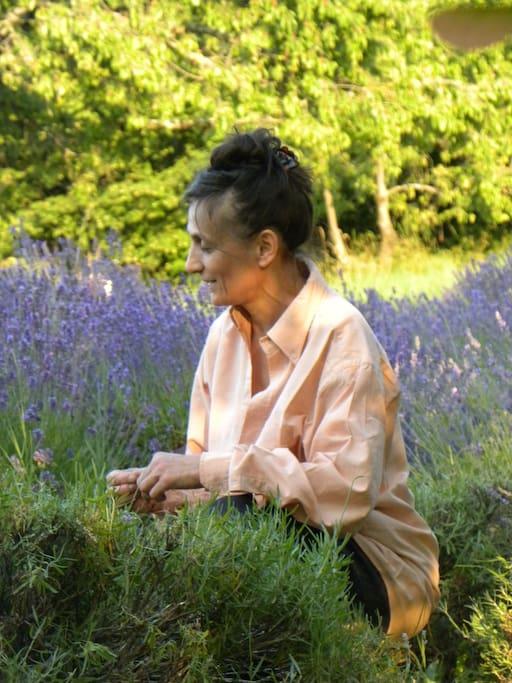 Rosamaria nella lavanda / Rosamaria in the lavender