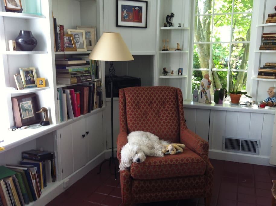 Our library and Charlie