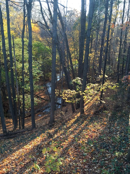 View of Buttermilk Creek from our  deck.
