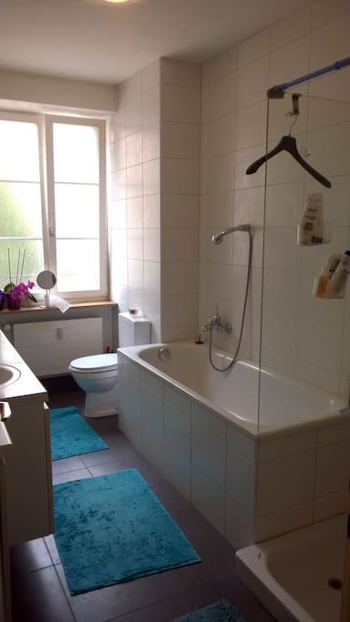 bathroom with bath and shower, I provide towels for you