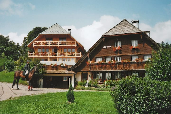 Apartment in Dachsberg with Garden, BBQ & Bar