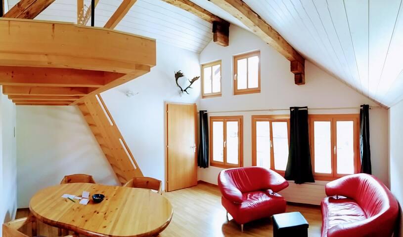 Meiringen - schöne Maisonette Wohnung