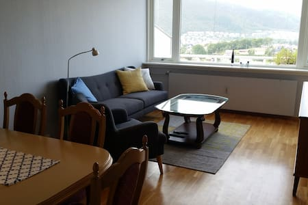 Single room in cozy flat, good transport links - Bergen