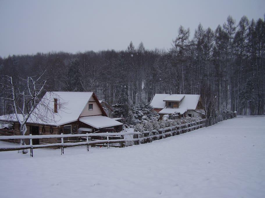 Zimową porą.