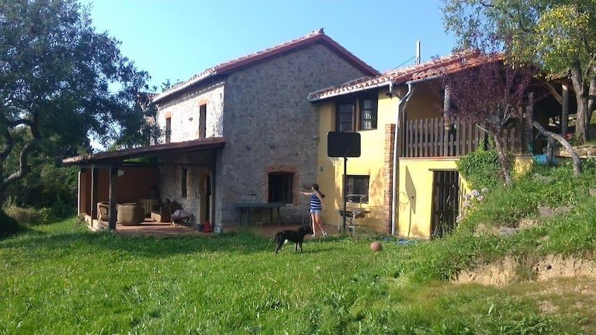 Casa Madretierra - Castañal