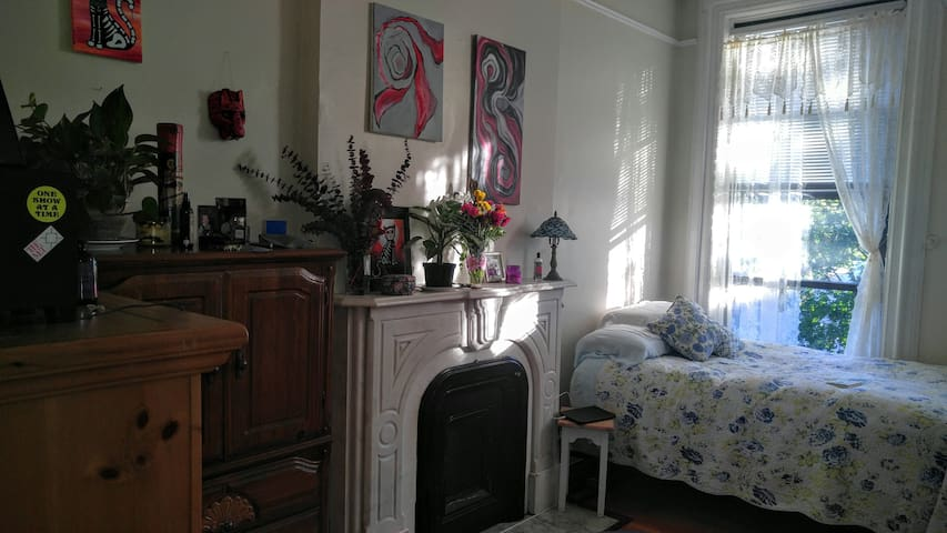 Charming room in historic building. - Albany - Appartement