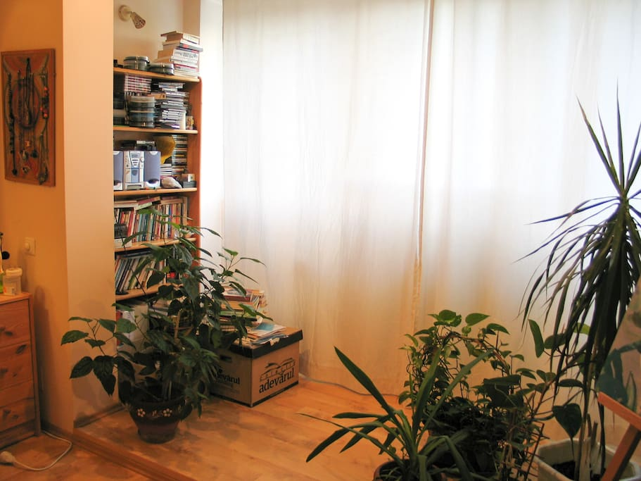In the Lord's bedroom you will find plants, books and music CDs