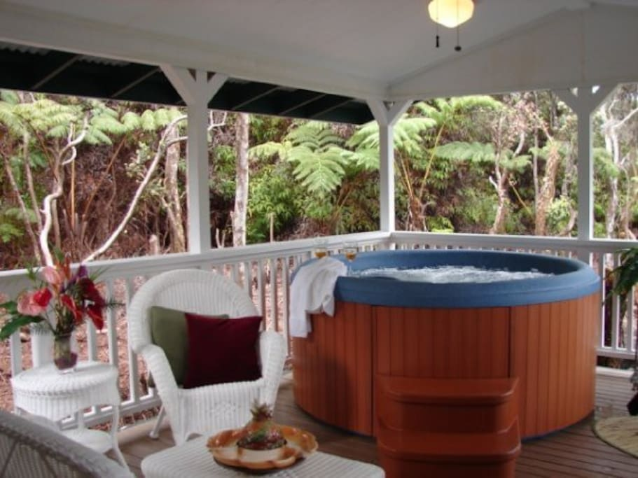 Relax on the Lanai with Privacy